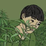 How a boy from Vietnam became a UK cannabis farm slave